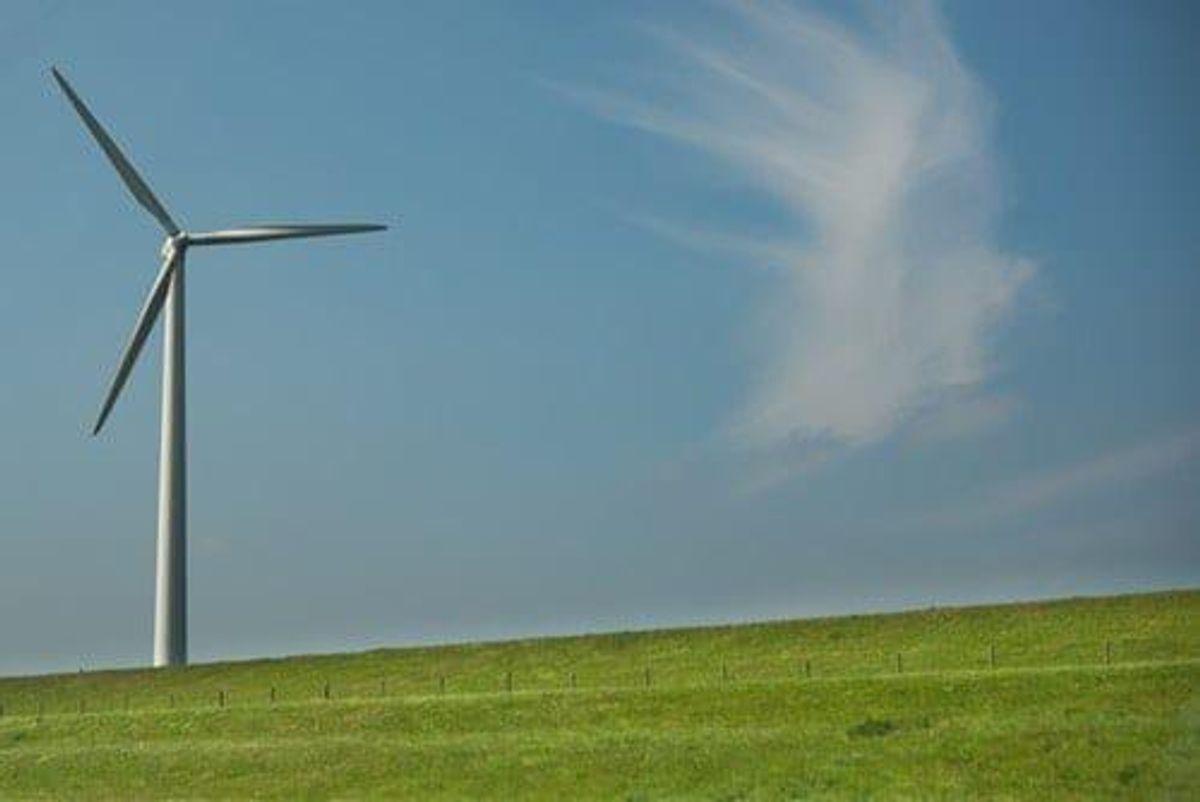 Mercury Building Largest Wind Farm in New Zealand