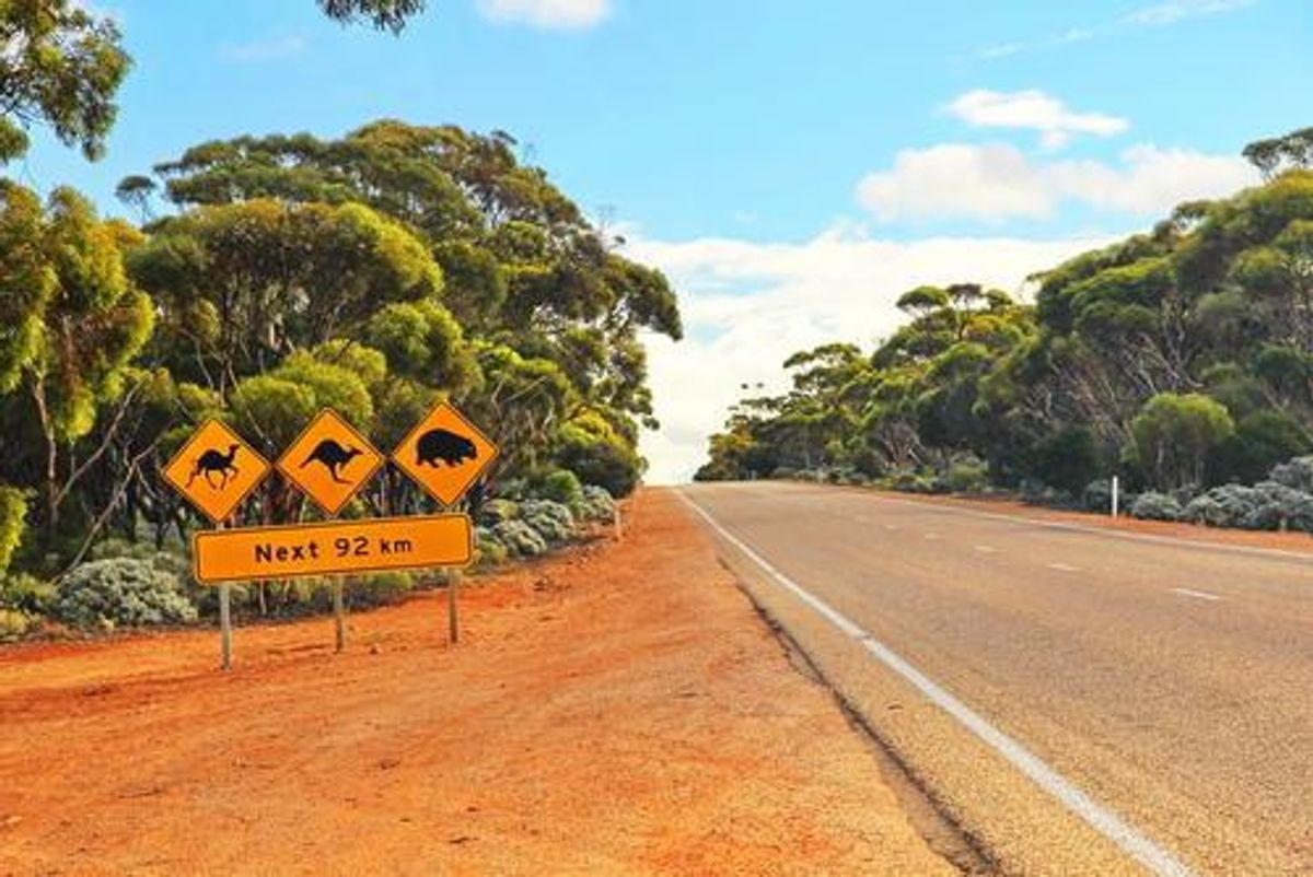 5 Top Gold Stocks in Western Australia