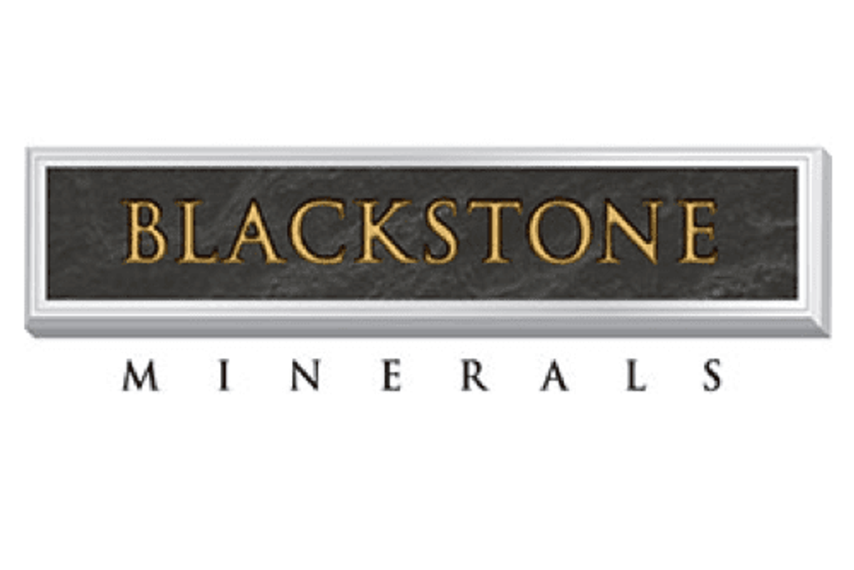 Blackstone To Raise Capital In Placement And Share Purchase Plan