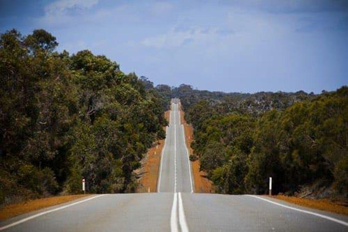 Australia Mining Trends 2019: Humps, Bumps and Trumps