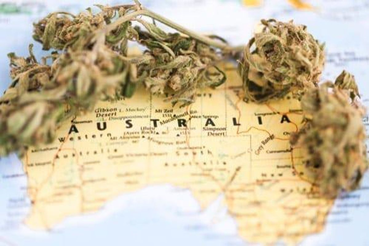 Challenges Facing Australia's Cannabis Industry