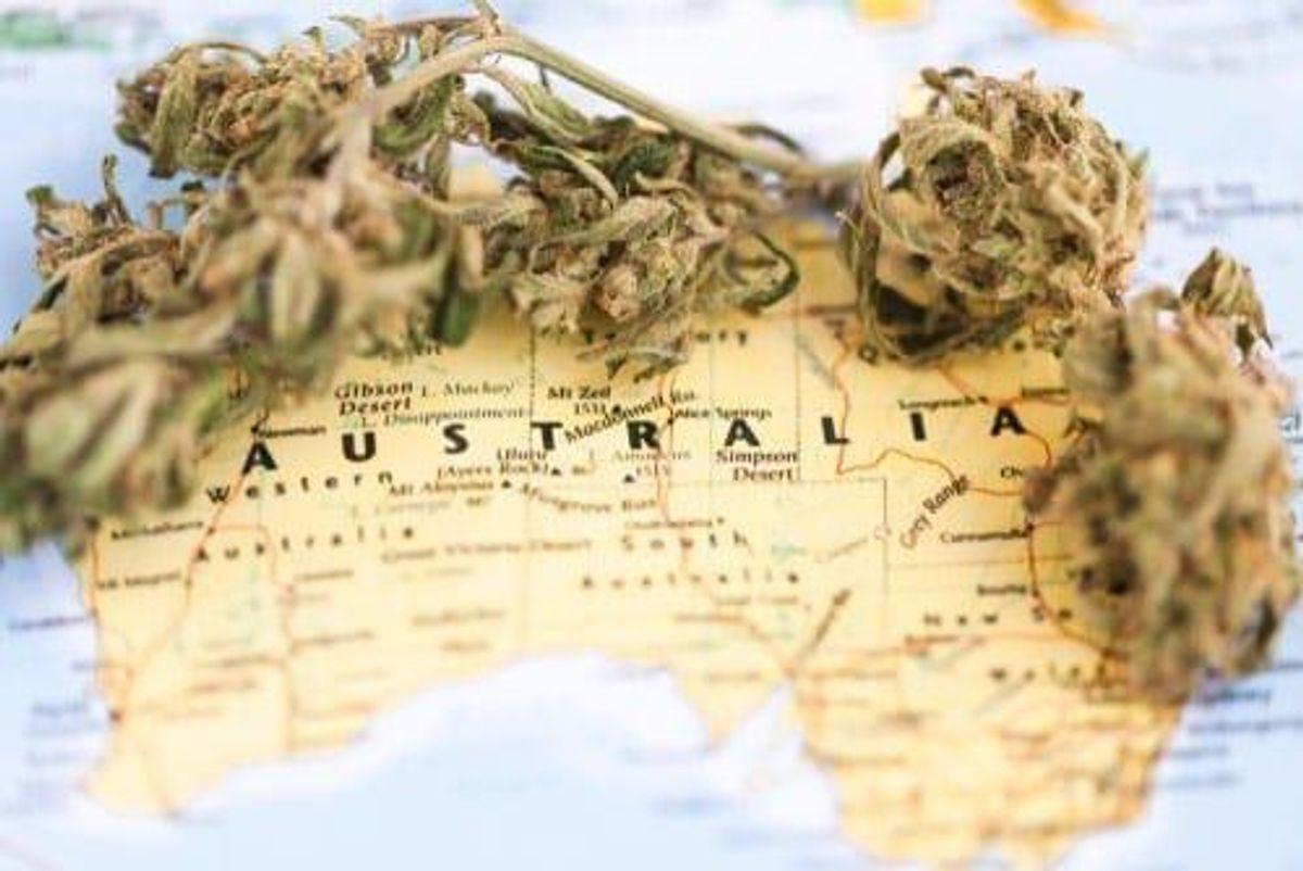 Canadian Cannabis Firms Alter Australian Strategies
