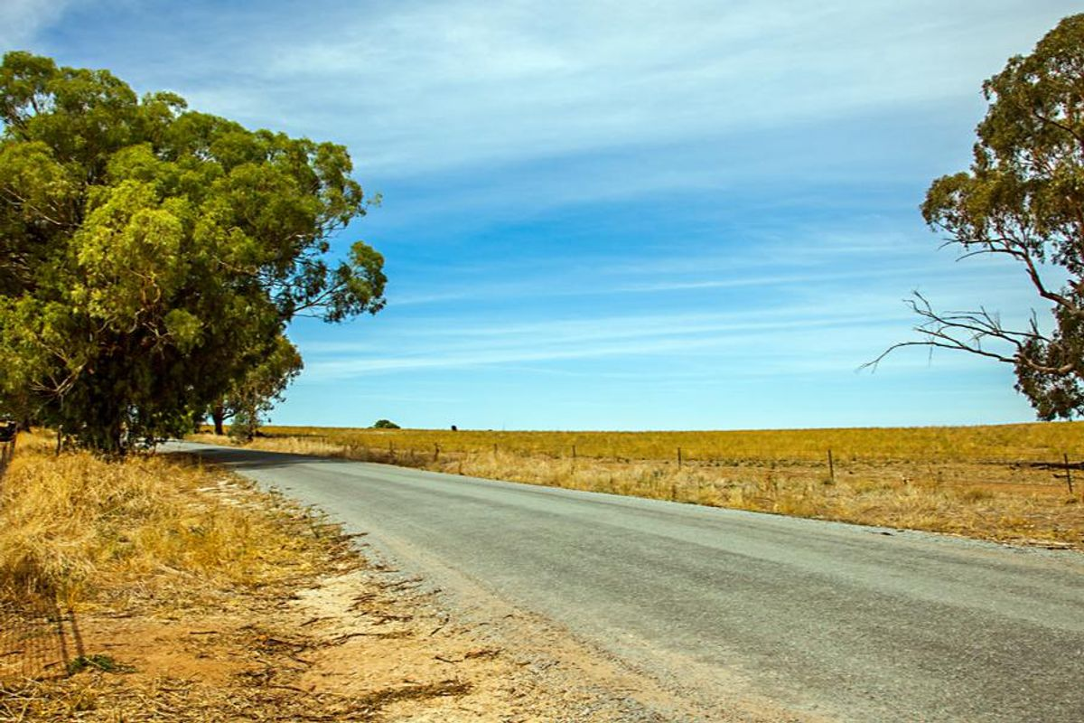 outback at narrandera, new south wales, australia