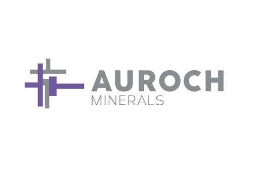 Auroch Minerals: Exploring High-Grade Nickel Sulfides in Western Australia
